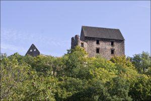 Okolica – Zamek Świny