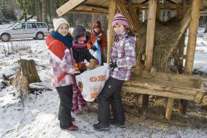 Zimowe dokarmianie