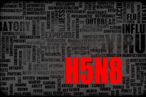 Apel do hodowców drobiu w sprawie H5N8