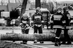 Wiatr powalił drzewo
