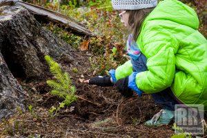 Nadleśnictwo Kamienna Góra rozpoczyna kolejną edycję akcji #sadziMY las
