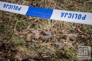 Znaleziono kolejne niewybuchy. Wezwano Patrol Rozminowania z Bolesławca